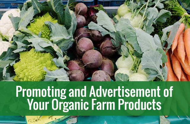 Promotion of Organic Farm Products